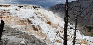 natural terracing at mammoth hot springs